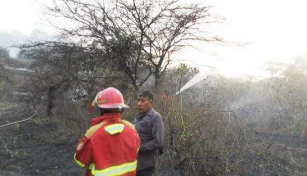 Incendio forestal en Lambayeque