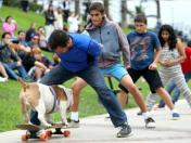 Otto, el perro peruano skater, es noticia central para YouTube