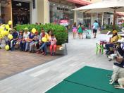 Perros WUF encantaron familias en mall 'pet friendly'
