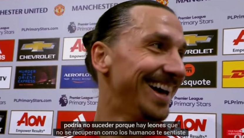 "Ibrahimovic: ""Los leones no se recuperan como los humanos"". (Video: YouTube)"