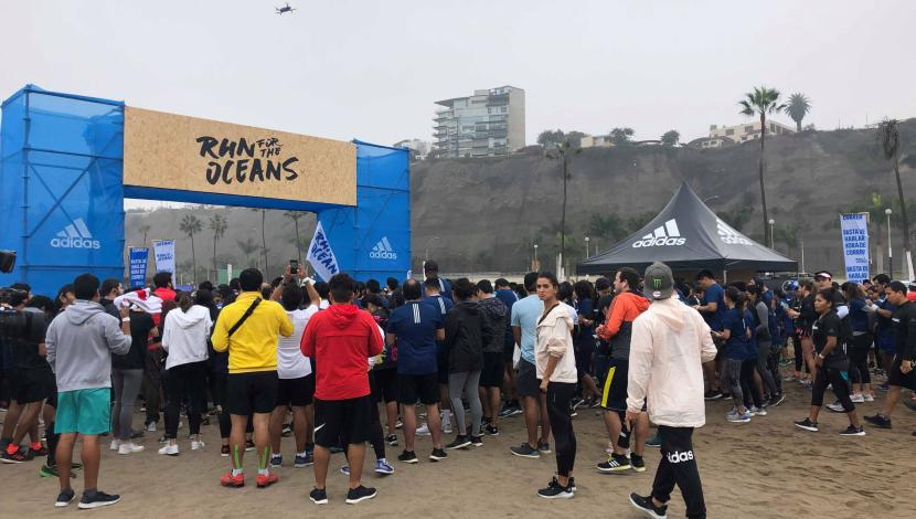 run for the ocean