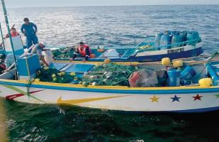 Pesca ilegal: A nivel mundial mueve US$23 mil millones