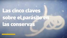 Cinco claves sobre las conservas de pescado contaminadas [VIDEO]